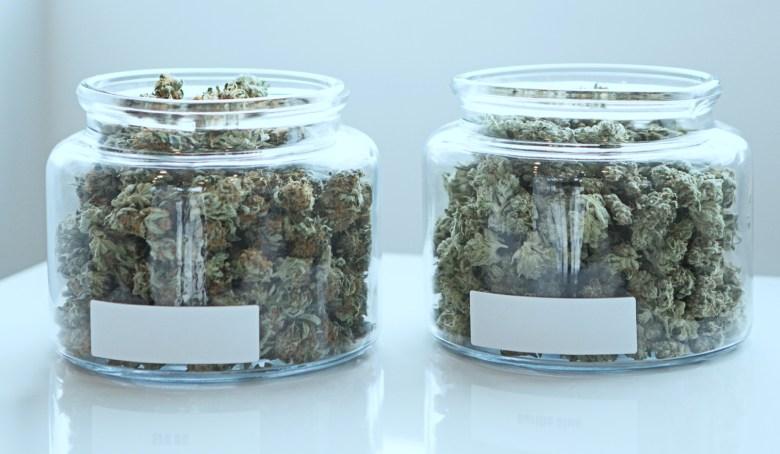 stockage idéal du cannabis légal