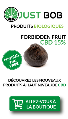 Haschisch legal Forbidden Fruit au CBD