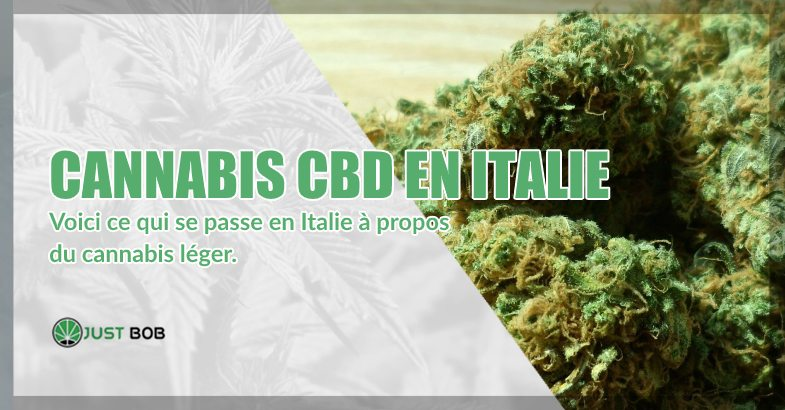 cannabis CBD en Italie