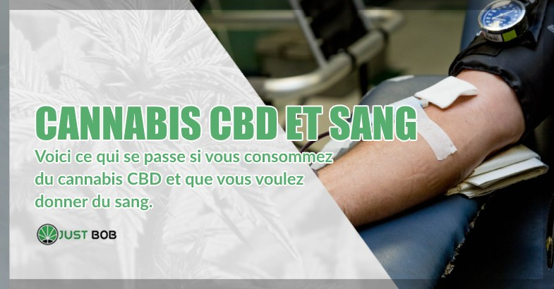 Cannabis CBD et dons volontaires de sang