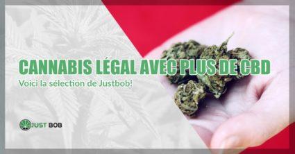 Cannabis légal avec plus de CBD