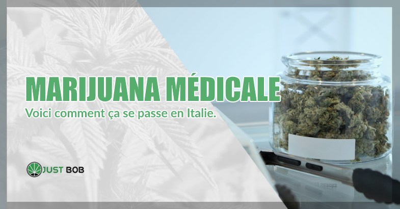 Marijuana médicale et cannabis cbd