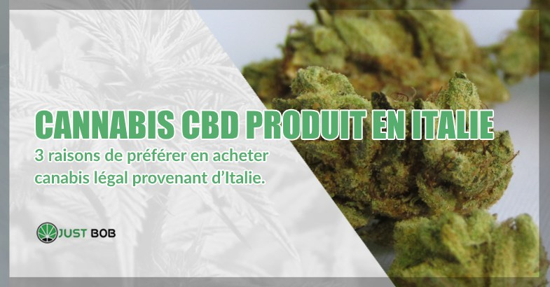 cannabis CBD produit en italie