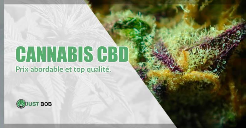 Cannabis CBD prix abordable