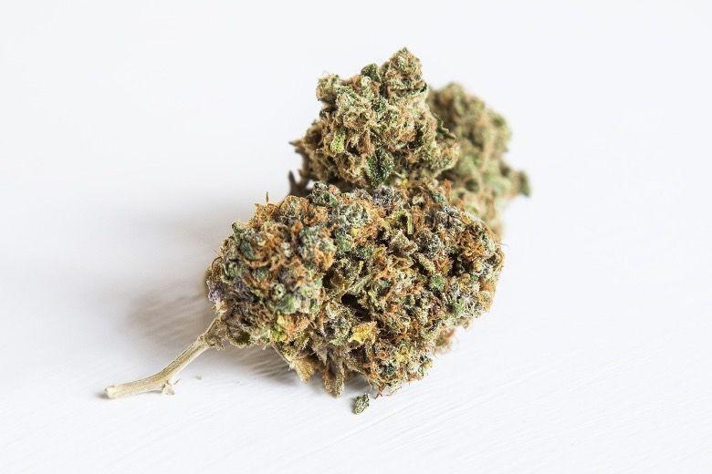 cannabis CBD en intérieur ou canabis légal en extérieur