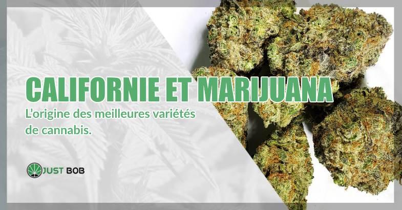 Californie et marijuana CBD