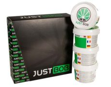 Kit Gold JustBob CBD France