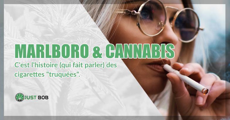 Marlboro & Cannabis histoire