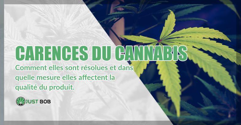 carences du cannabis sans THC