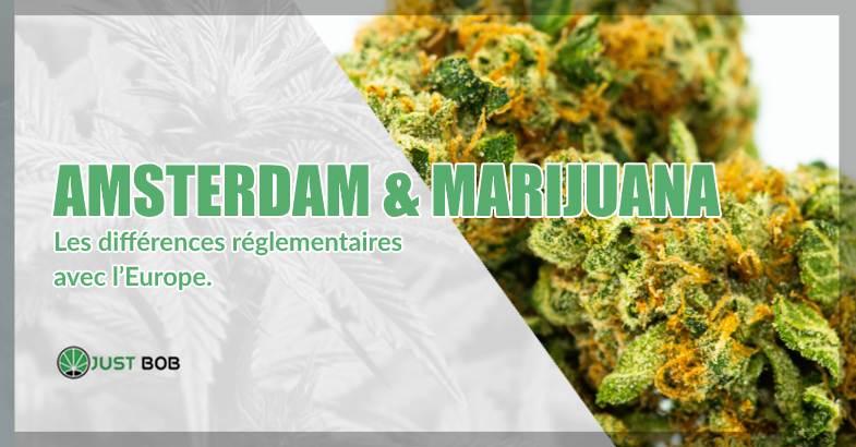 Amsterdam & marijuana différences réglementaires