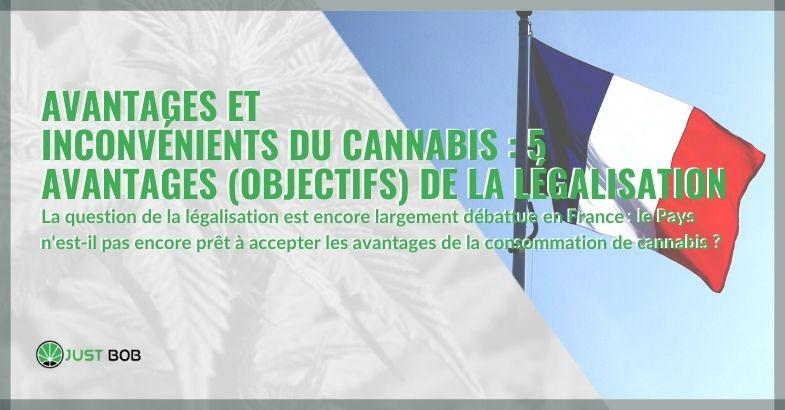Avantages et inconvénients du cannabis