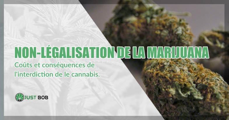 non-légalisation de la marijuana classique et cannabis CBD
