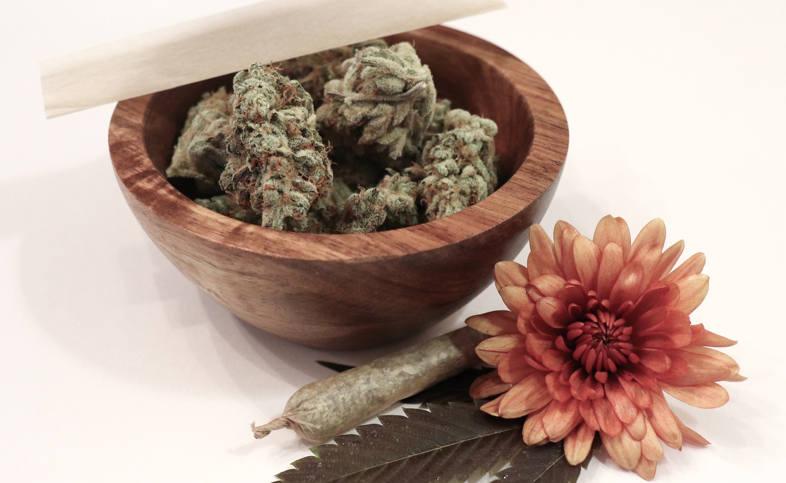 fleur de CBD