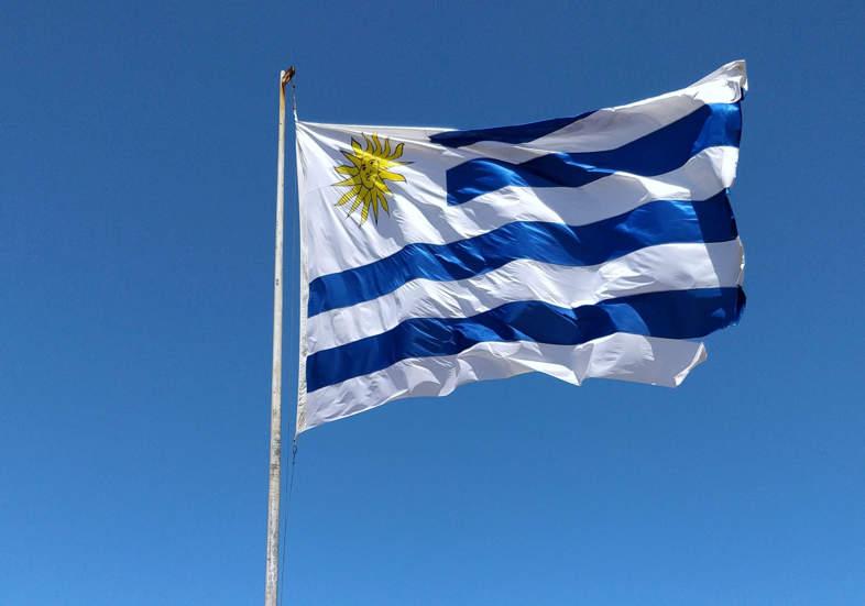 L'Uruguay, un pays où le cannabis est une ressource