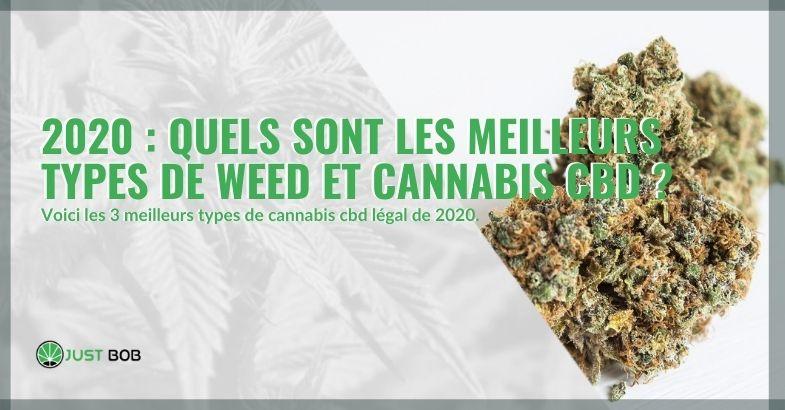 En 2020, quelle est la meilleure herbe et cannabis CBD?