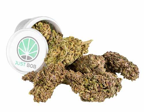 Purple GG # 4 est la meilleure herbe légale de 2020