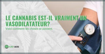 Le cannabis a-t-il vraiment des effets vasodilatateurs?