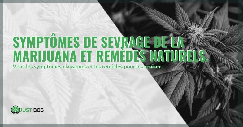 Remèdes naturels et symptômes du sevrage de la marijuana