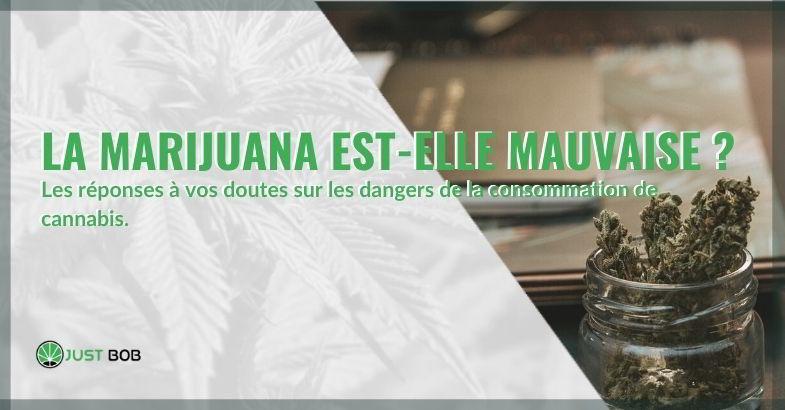 La marijuana est-elle mauvaise ? Voici la réponse.