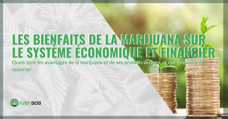 Avantages économiques et financiers de la marijuana dans les pays où elle est légalisée