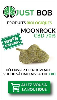 banner justbob haschisch legal moonrock