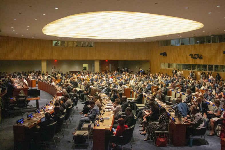 L'ONU reconnaît les propriétés thérapeutiques du cannabis: les nouvelles.