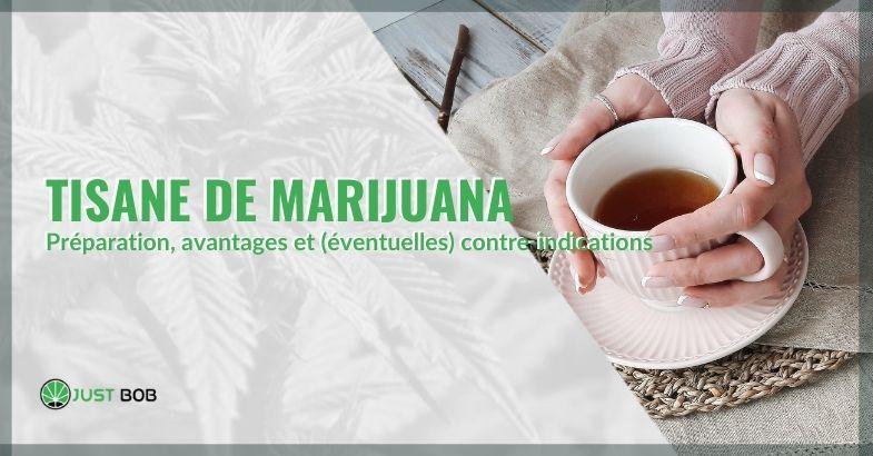 Tout savoir sur le thé de marijuana