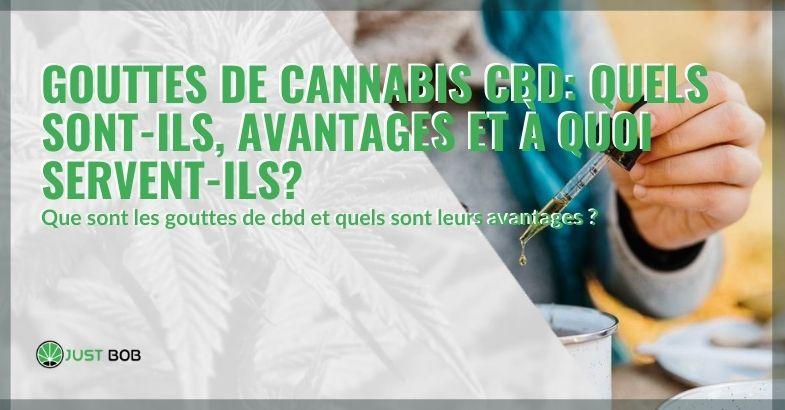Cannabis CBD en gouttes: qu'est-ce que c'est, ses bienfaits et à quoi ça sert