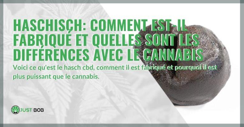 Comment le hasch est-il fabriqué et quelles sont les différences avec le cannabis?
