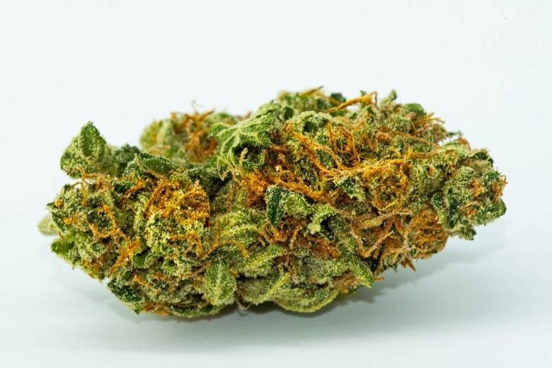 Bourgeons de marijuana de qualité