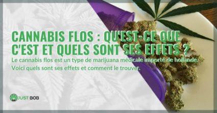 Qu'est-ce que le cannabis Flos et quels sont ses effets?