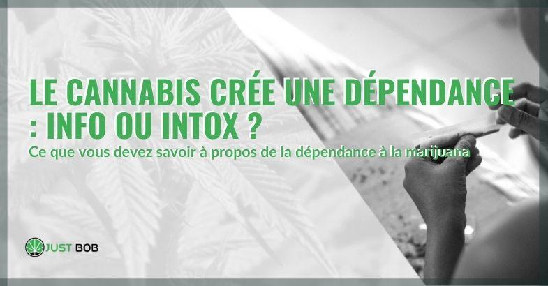 Est-ce vrai ou faux que le cannabis crée une dépendance?