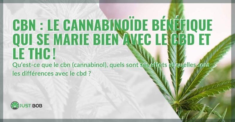 Cannabinol CBN: les effets et les différences avec le CBD