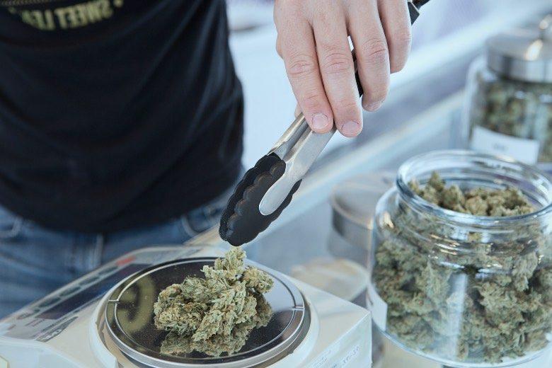 Meilleures variétés de cannabis au Boerejongens Coffeeshop Center