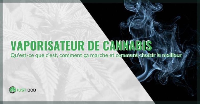 Qu'est-ce que le vaporisateur de cannabis et comment fonctionne-t-il?