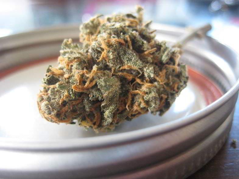 Cannabinoïde CBG : propriétés d'une substance fascinante.