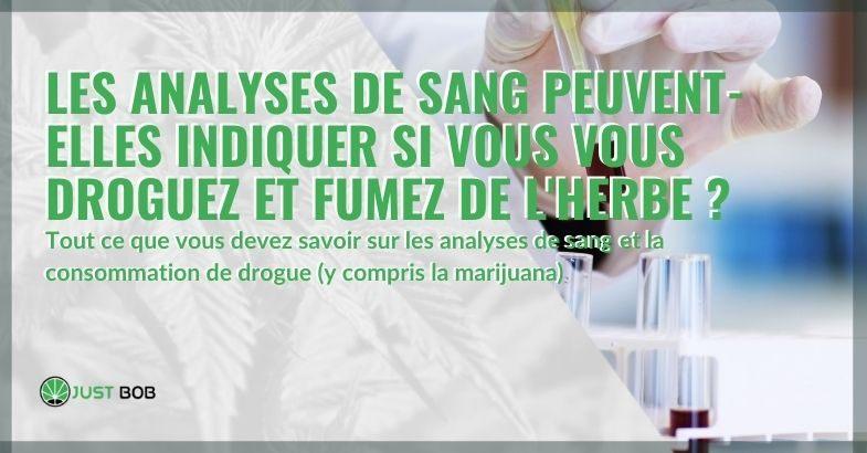 Si vous fumez de la marijuana et consommez de la drogue, cela se voit-il dans les tests sanguins?