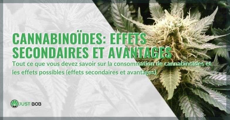Les avantages et les effets secondaires des cannabinoïdes