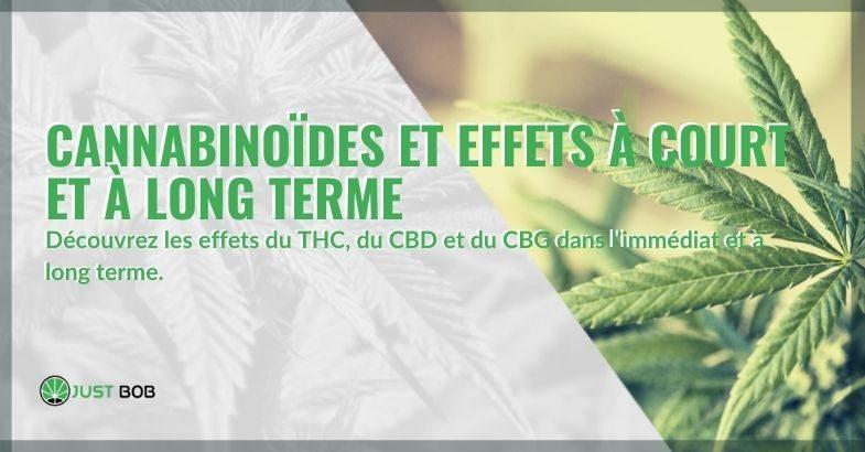 Quels sont les effets si les cannabinoïdes sont pris à court ou à long terme ?