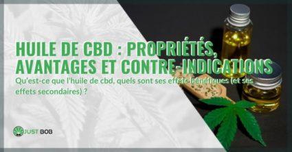 Les avantages, propriétés et contre-indications de l'huile de CBD