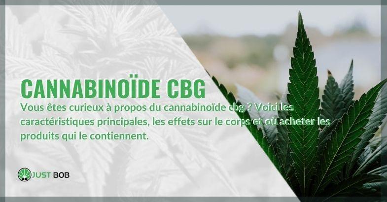 Toutes les propriétés, effets et où trouver le cannabinoïde CBG