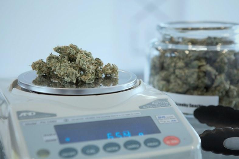 En France désormais, le commerce du cannabis CBD est légal