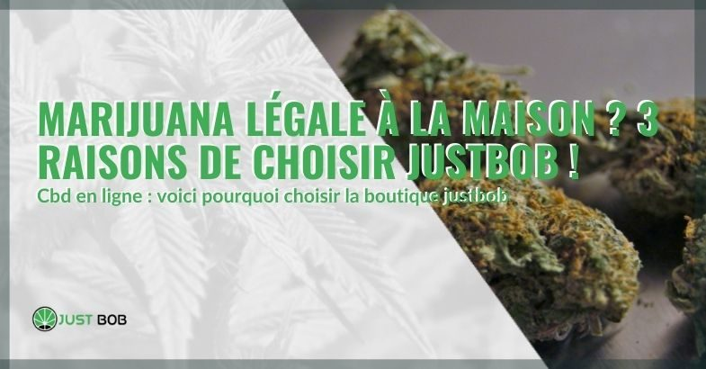 La boutique en ligne de CBD Justbob : 3 raisons de la choisir pour obtenir de la marijuana légale à domicile