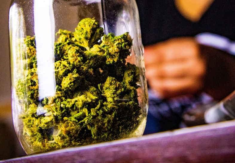 Cannabis à usage thérapeutique avec THC