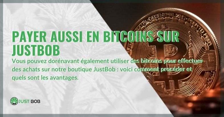 Les avantages et les moyens d'acheter et de payer avec des bitcoins également sur Justbob