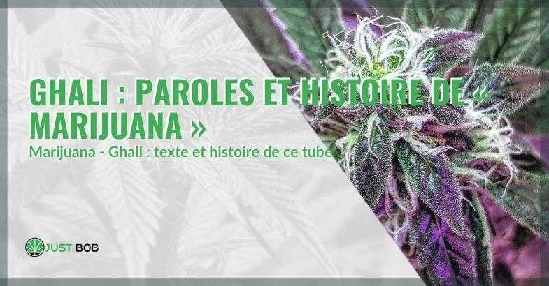 """Paroles et histoire de la chanson """"Marijuana"""" de Ghali."""