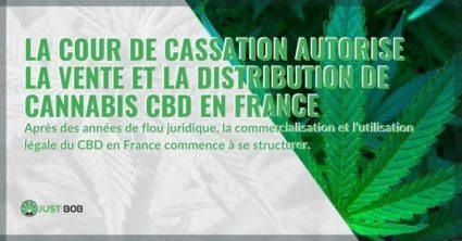 La France peut enfin vendre et distribuer légalement du cannabis CBD