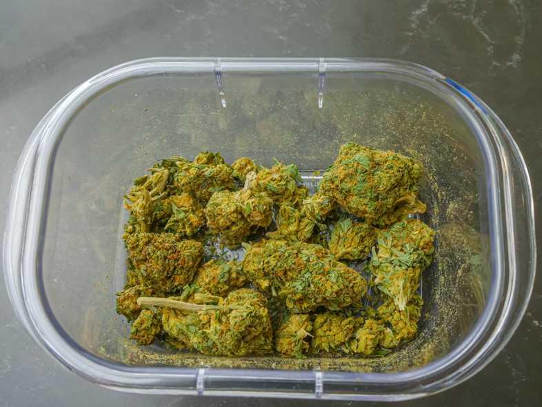 Où est-il préférable d'acheter de la marijuana légale?