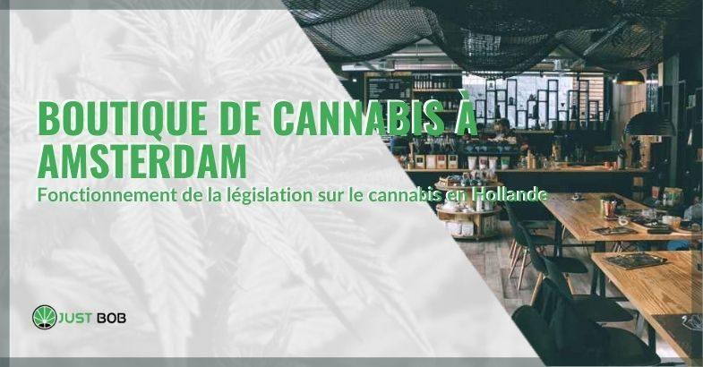 Les coffee shops qui vendent du cannabis à Amsterdam