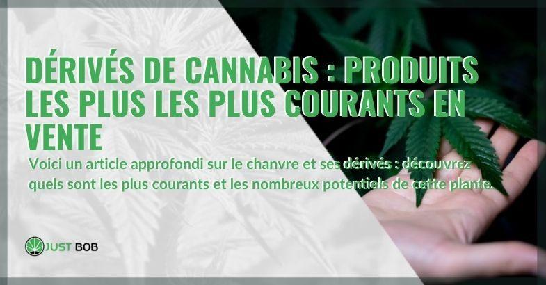 Aperçu des dérivés du cannabis : voici les plus courants et le potentiel de la plante